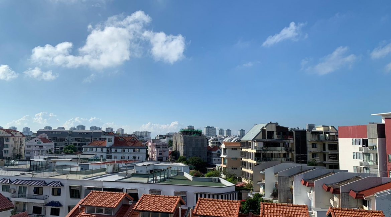 Aspen Loft Joo Chiat Penthouse Sale (49)