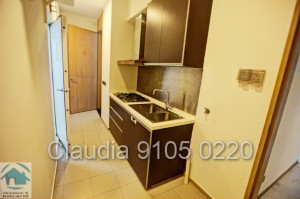 Orange Grove Residences, Sale of 4 bedroom luxury apartment