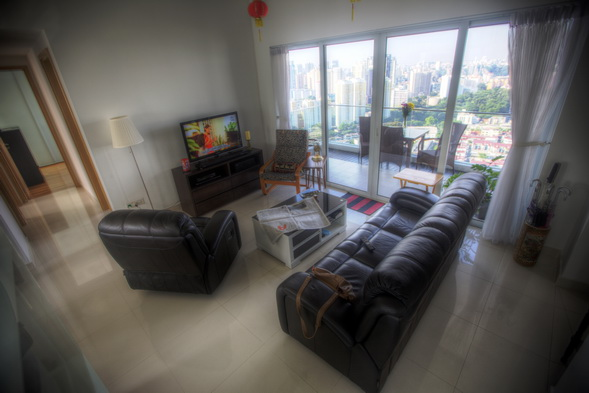 Penthouse Regency Tiong Bahru for Rent 3 Bed