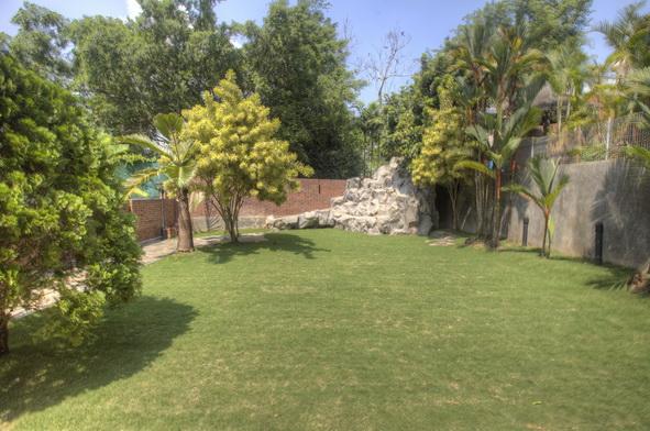 House Rent Chestnut Gardens Upper Bukit Timah GESS (1)