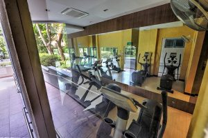 Oleanas Residences Kim Yam Heights for Rent