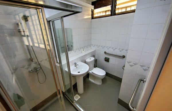 Thomson View Condo Rent 2 bedroom